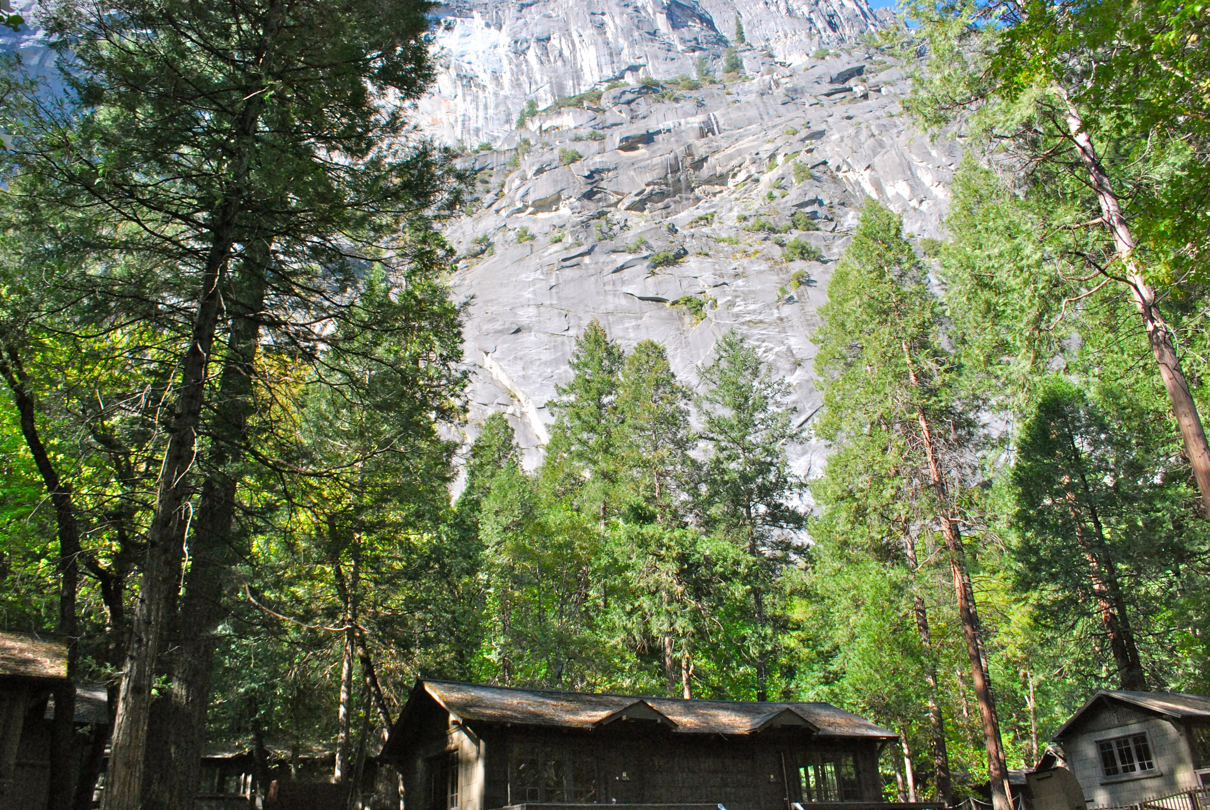 winter yosemite and cabins of the cabinfromroadnorth view a info cabin home vacation forest lodge house family road fallandwinter